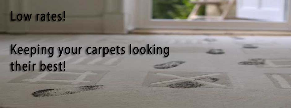 carpet cleaning colchester